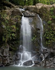 "<p></p><div id=""centered_description"">Bamboo Falls, Hana Highway</div>"