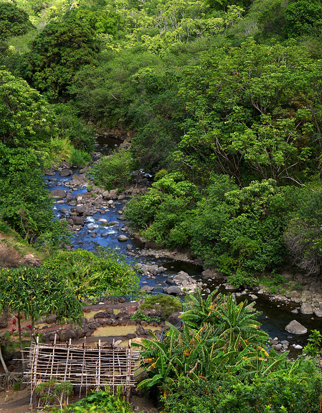 "<p></p><div id=""centered_description"">Stream, Iao Valley</div>"