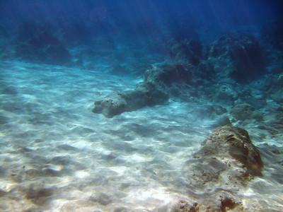 2007-11-26 Manele-Hulopoe Snorkeling