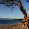 Baldwin Beach, Upcountry Maui