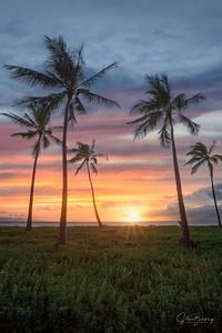 Maui III