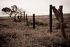 Kuahua Ranch Fence