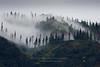 Maunalei Ridgeline Clouds