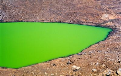 Kermit Green Waiau