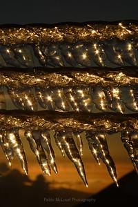 Gold Illumination