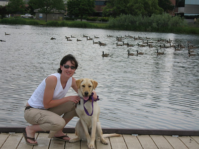 Maverick at Park Center Pond