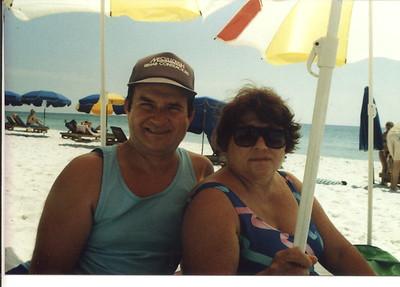 Navarre 1990