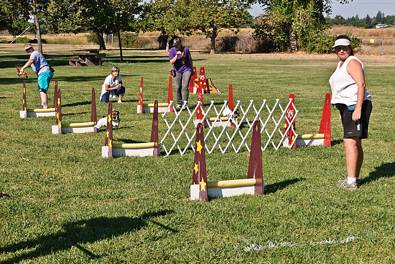 Flyball-068