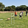 Flyball-143