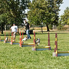Flyball-193
