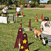 Flyball-131