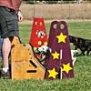 Flyball-177