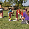 Flyball-073