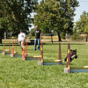 Flyball-195