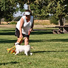 Flyball-077