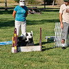 Flyball-043