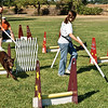 Flyball-120