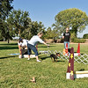 Flyball-041