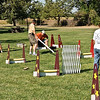 Flyball-116