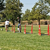 Flyball-189