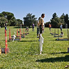 Flyball-174