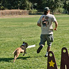 Flyball-064