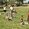 Flyball-124