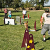 Flyball-127
