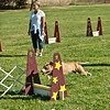Flyball-058
