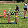 Flyball-067