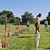 Flyball-176