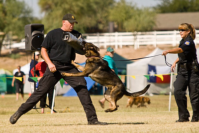 Phoenix, AZ, PD K-9 Demonstration - 11/1/2008
