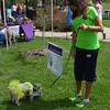 Evie, a terrier mix, gets a drink of water as her human, Lindi Oehmke of Effingham, looks on.