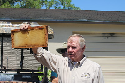 Honey Farm (11)