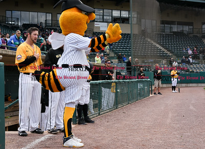 050317  Wesley Bunnell   Staff  New Britain Bees vs Somerset Patriots in a Wednesday morning game attended by areas school children. Students from Fair Haven School in New Haven sing God Bless America as Sting conducts.