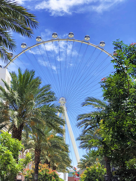 The High Roller Ferris Wheel. This 550-foot-tall Ferris wheel accommodates 28 40-person observation cabins and a total capacity of 1,120 passengers. It opened to the public on March 31, 2014 and is currently the world's tallest Ferris wheel.