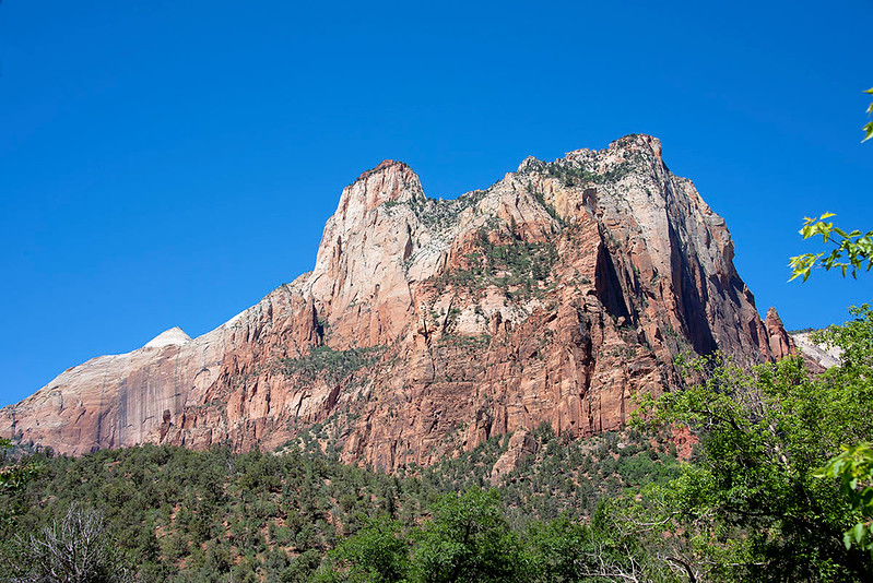 All the following images were taken inside Zion National Park