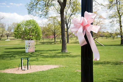 05/08/18  Wesley Bunnell | Staff  A pink ribbon is one of many tied all around the city for the upcoming 15th annual Connecticut Breast Health Initiative's Race In the Park.