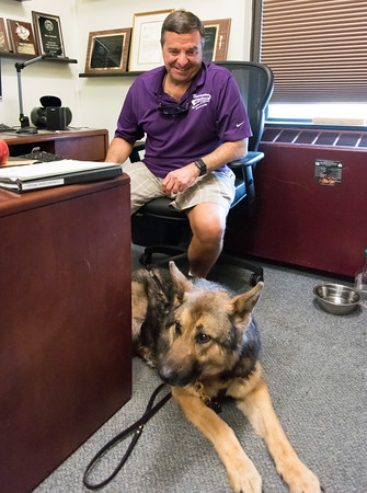 06/05/18 Wesley Bunnell | Staff Newington Superintendent of Parks and Recreation Bill DeMaio, who is blind, discusses how his service dog Izaac helps in his daily life.