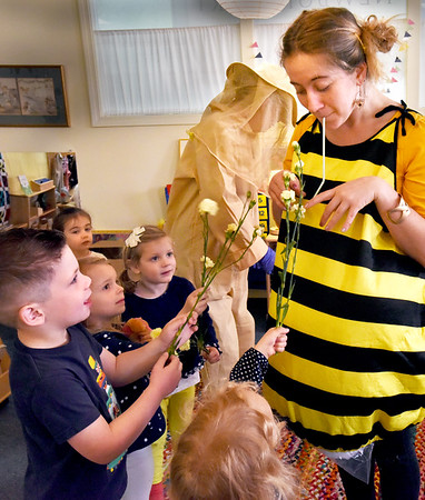 BRYAN EATON/Staff photo. Students in Aisha Chodat and Tina Rawson's class at the Newburyport Montessori School were learning about bees and how they pollinate plants and make honey. Chodat, dressed as a bee, uses a straw to pretend to take the pollen out of flowers held by, clockwise, from left, Avery Kulowiec, Millie Patella, Maeve Rahilly and Katherine Aussant.
