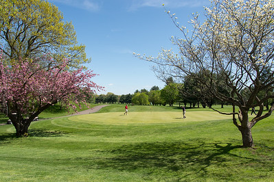 05/6/19  Wesley Bunnell | Staff  Trees are blooming under perfect sky's at Stanley Golf Course on Monday afternoon.