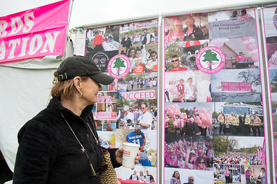 05/10/19  Wesley Bunnell | Staff  The President of the Connecticut Breast Health Initiative, Joyce Bray, looks over photos from previous race years on the outside of one of many tents set up on Friday afternoon in advance of Saturday's Race in the Park which helps to raise funds for the initiative.