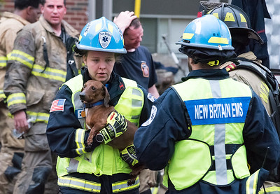 05/10/19  Wesley Bunnell | Staff  New Britain Fire Department, assisted by Bristol, Hartford and Meriden, responded to a fire in an apartment building at 180 Allen St on Friday afternoon which appeared to be located on the third floor. An New Britain EMS worker holds a dog which was just handed to her by a New Britain firefighter to examine.