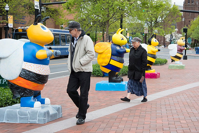 05/14/19  Wesley Bunnell | Staff  Visitors to New Britain's Central Park look over artist decorated bee's on display on Tuesday afternoon. The display is a preview of the Bees Across New Britain art project with several more statues being painted.