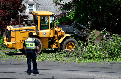 5/24/2019 Mike Orazzi | Staff High winds brought down a tree near the intersection of King Street and Woodland Streets Friday afternoon delaying traffic for a short time.