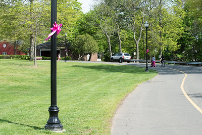 05/6/19  Wesley Bunnell | Staff  Pink ribbons are tied to light poles in Walnut Hill Park in advance of the CT Breast Health Initiative's Race in the Park.