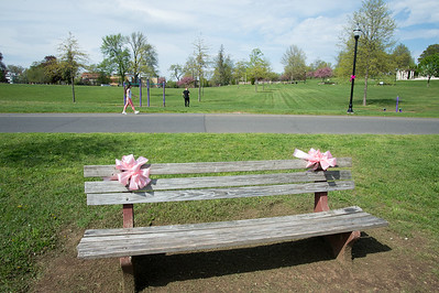 05/6/19  Wesley Bunnell | Staff  Pink ribbons on a bench in Walnut Hill Park in advance of the CT Breast Health Initiative's Race in the Park.
