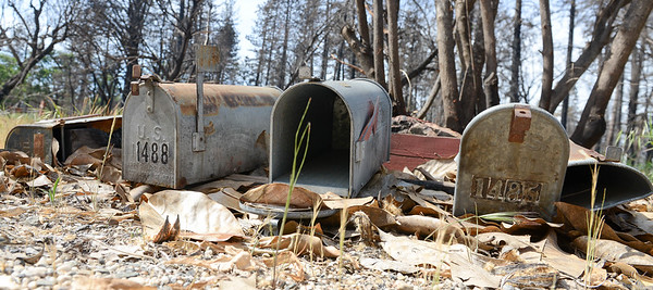 Fire damaged mail boxes line a lane off of Sawmill Road Wednesday in Paradise. (Matt Bates -- Enterprise-Record)