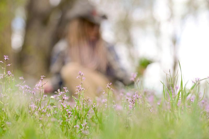 Dandelion Picking in Boulder