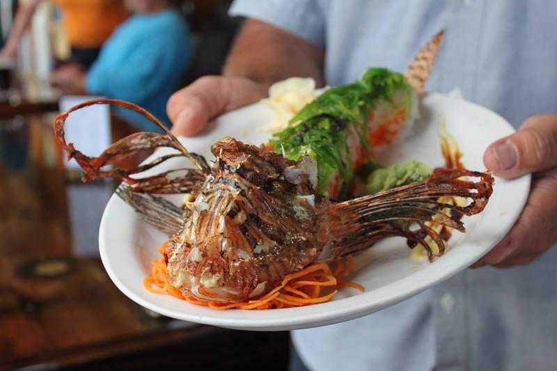Lionfish sushi, Castaway, florida keys